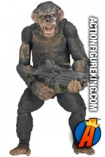 NECA Dawn of the Planet of the Apes Series 2 Koba action figure.