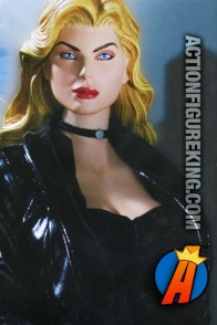 Fully artciulated 13-inch DC Direct Black Canary action figure with authentic fabric uniform.