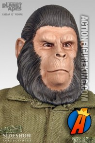 Sixth-scale Conquest of the Planet of the Apes Caesar action figure from Sideshow Collectibles.